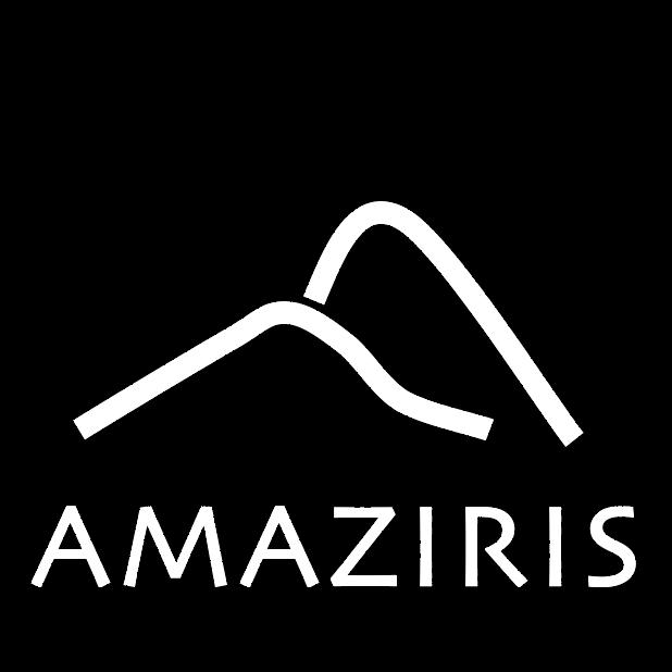 Amaziris SAP consulting SAPUI5 ABAP fiori ECC CRM S4 hana CRM SSM social services BRFplus brf+ your partner Morocco partenaire Maroc